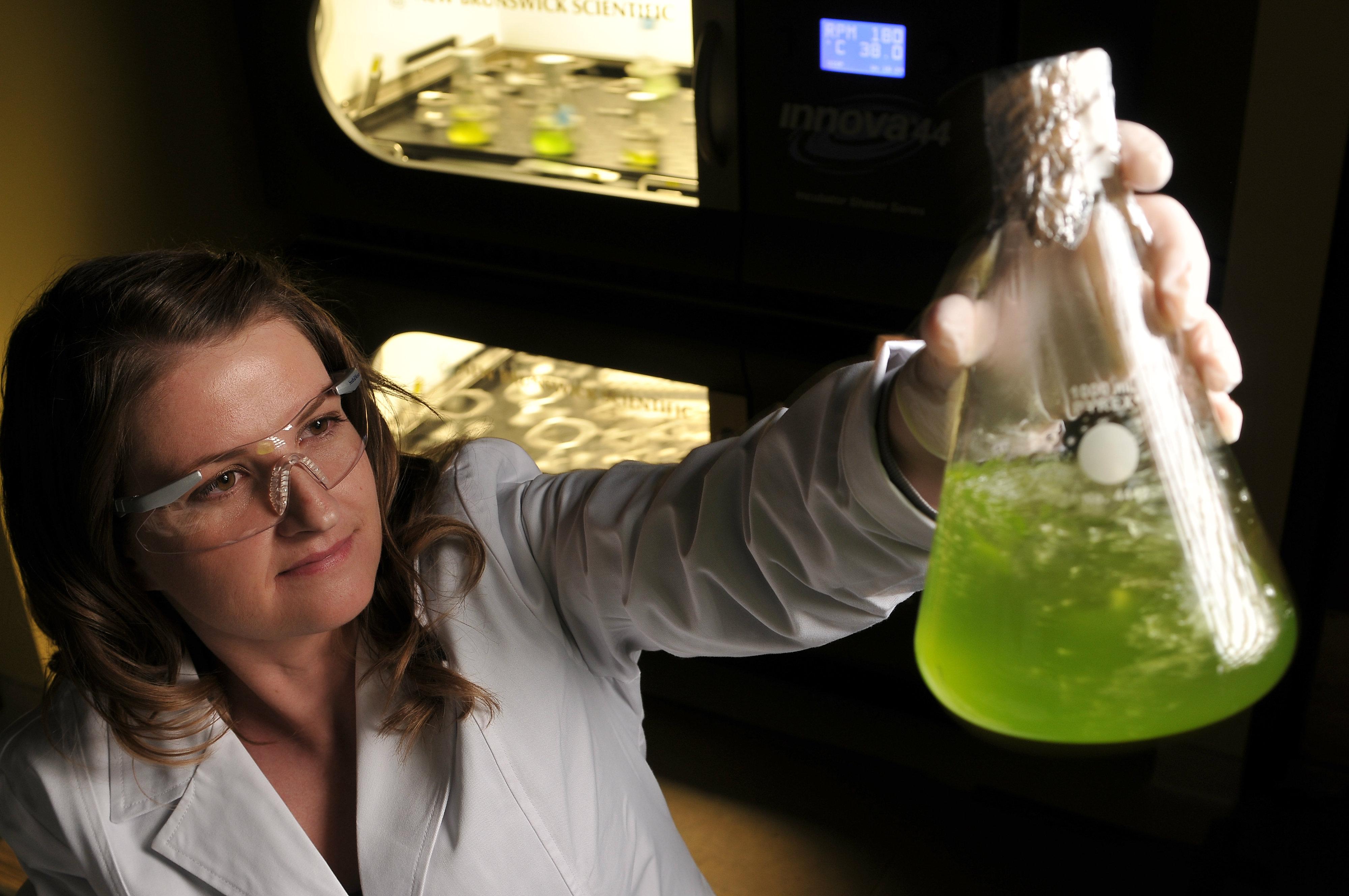 Mines Assistant Professor Nanette Boyle