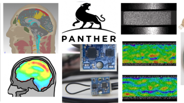 Brain scans, panther logo, helmets